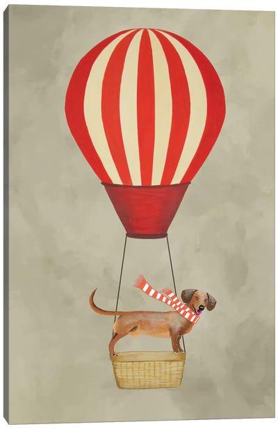 Dachshund With Air Balloon Canvas Print #COC23