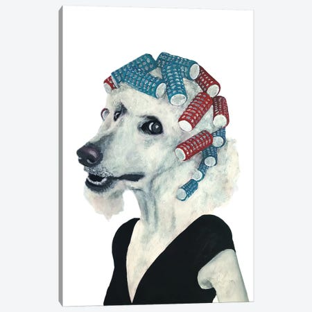 Poodle Haircurles Canvas Print #COC256} by Coco de Paris Canvas Artwork