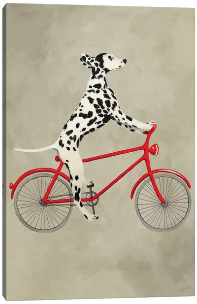 Dalmatian On Bicycle Canvas Art Print