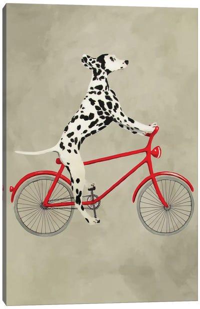 Dalmatian On Bicycle Canvas Art Print