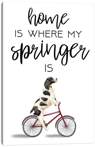 Springer Canvas Art Print
