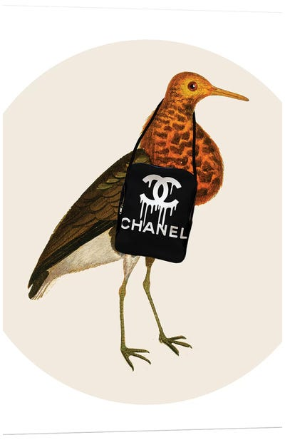 Bird With Chanel Bag Canvas Art Print