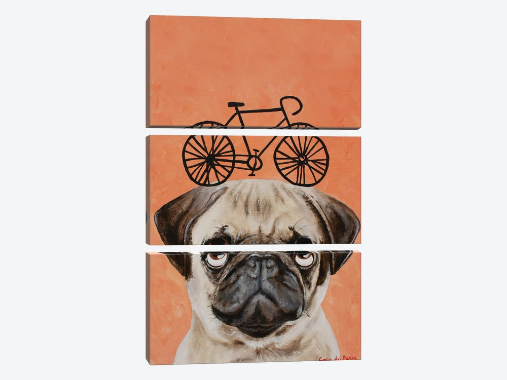 Pug With Bicycle by Coco de Paris 3-piece Canvas Wall Art