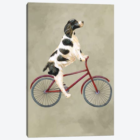 English Springer On Bicycle Canvas Print #COC40} by Coco de Paris Canvas Art