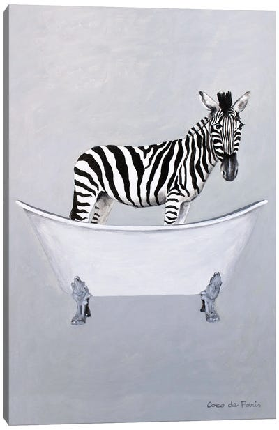 Zebra in bathtub Canvas Art Print