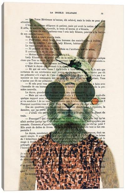 Vintage Rabbit Canvas Art Print