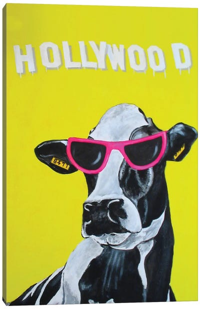 Hollywood Cow Canvas Print #COC49