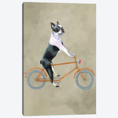 Boston Terrier On Bicycle Canvas Print #COC4} by Coco de Paris Canvas Art