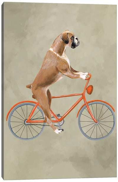 Boxer On Bicycle Canvas Art Print