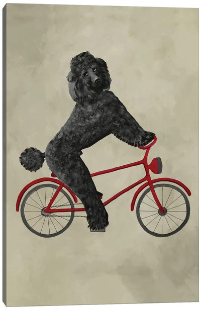 Poodle On Bicycle Canvas Art Print