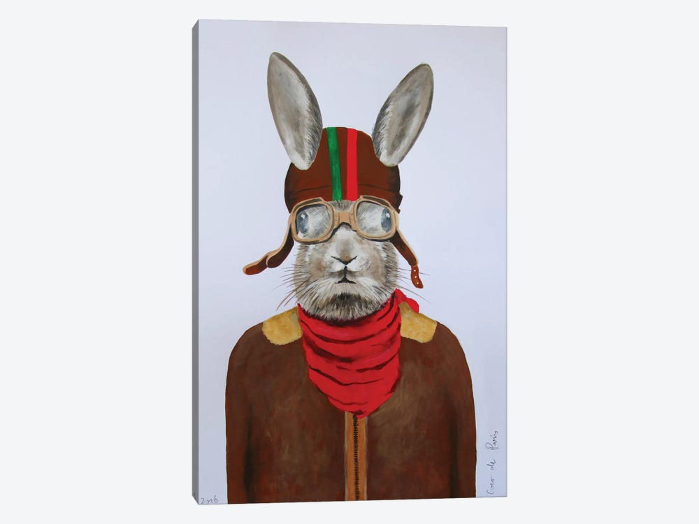 Rabbit Aviator II by Coco de Paris 1-piece Canvas Art
