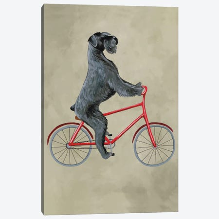Schnauzer On Bicycle Canvas Print #COC70} by Coco de Paris Art Print