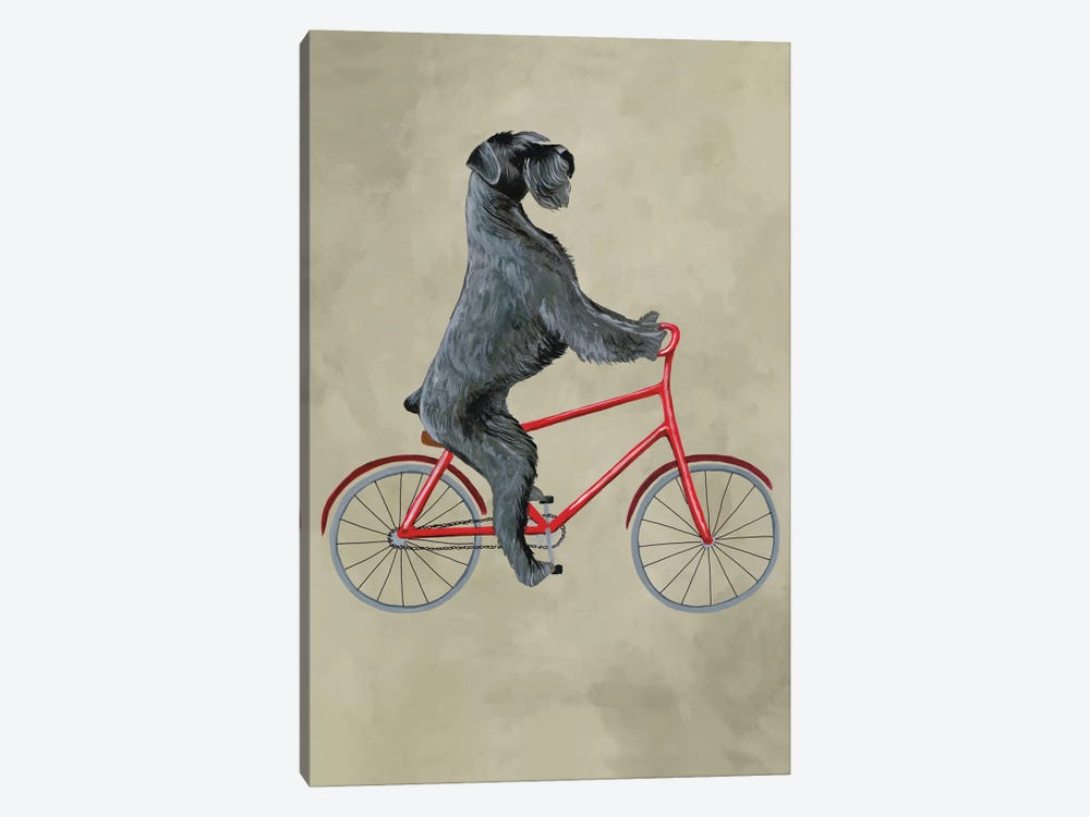 Schnauzer On Bicycle by Coco de Paris 1-piece Canvas Print