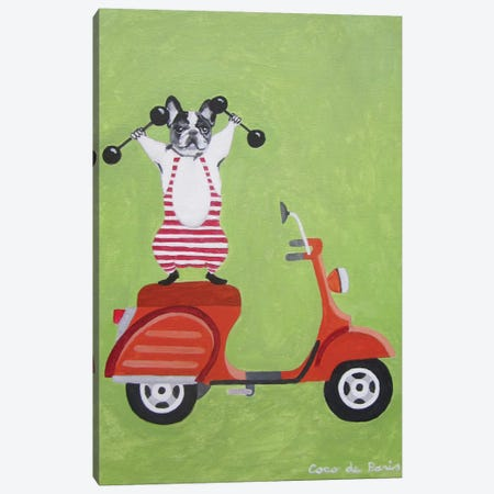 Sporty Bulldog On Vespa Canvas Print #COC74} by Coco de Paris Canvas Wall Art