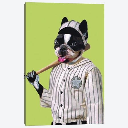 Bulldog Baseball Player Canvas Print #COC7} by Coco de paris Canvas Wall Art