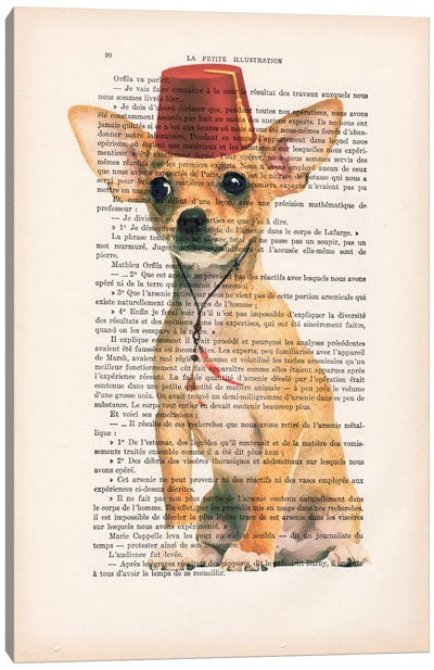 Vintage Paper Series: Chihuahua With Fez Canvas Art Print