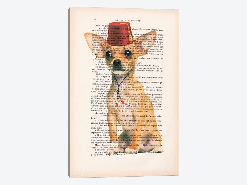 Chihuahua With Fez 1-piece Canvas Art Print