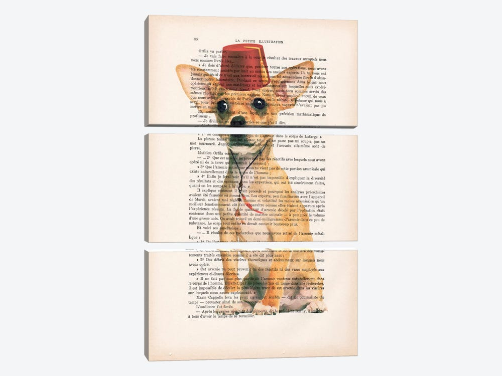Chihuahua With Fez 3-piece Art Print