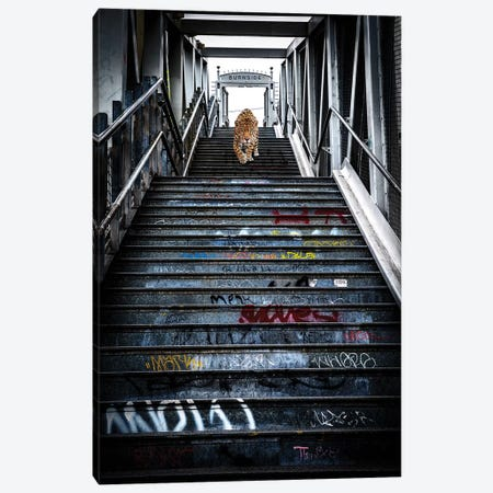 Portland Jaguar Canvas Print #COG10} by Matt Coglianese Canvas Print