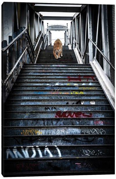 Portland Jaguar Canvas Art Print