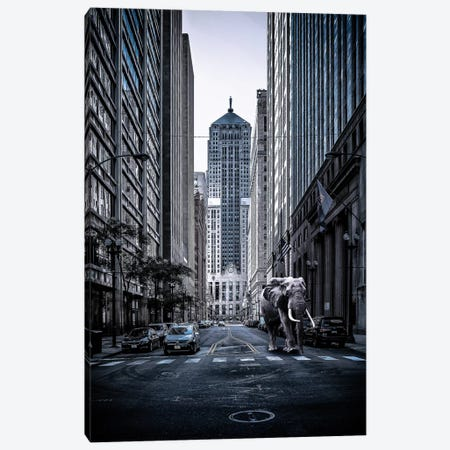 Entrenched Canvas Print #COG36} by Matt Coglianese Canvas Art