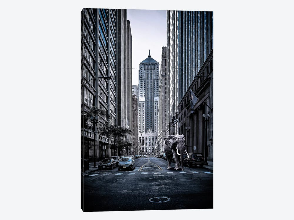 Entrenched by Matt Coglianese 1-piece Canvas Wall Art