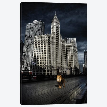 Escaping King Canvas Print #COG38} by Matt Coglianese Canvas Print