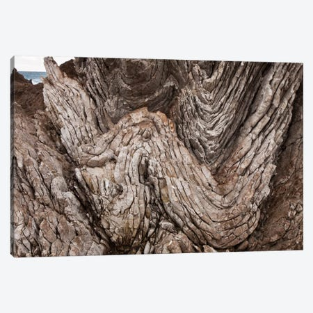Folded Limestone Layers, Kaikoura, North Canterbury, New Zealand Canvas Print #COL15} by Colin Monteath Art Print
