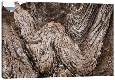 Folded Limestone Layers, Kaikoura, North Canterbury, New Zealand Canvas Art Print