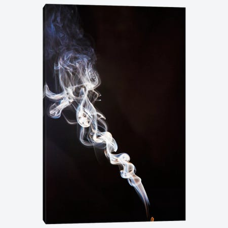 Incense Smoke Rising, New Zealand Canvas Print #COL21} by Colin Monteath Canvas Art Print