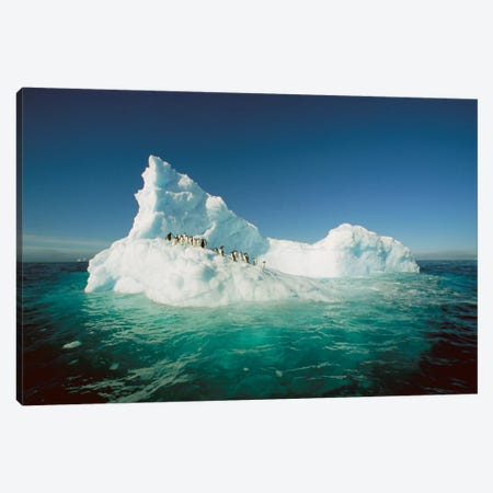 Adelie Penguin Group Riding Sculpted Iceberg, Terre Adelie Land, East Antarctica Canvas Print #COL2} by Colin Monteath Canvas Artwork