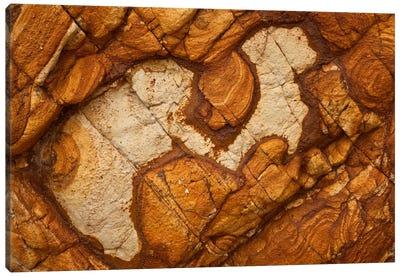 Volcanic Rock, Onawe, Banks Peninsula, Canterbury, New Zealand I Canvas Art Print