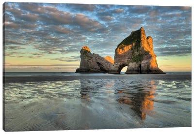 Archway Islands At Sunrise, Wharariki Beach Near Collingwood, Golden Bay, New Zealand Canvas Art Print