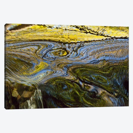 Autumn Patterns In Small Waterfall, Canterbury, New Zealand Canvas Print #COL5} by Colin Monteath Canvas Art Print