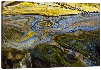Autumn Patterns In Small Waterfall, Canterbury, New Zealand Canvas Art Print