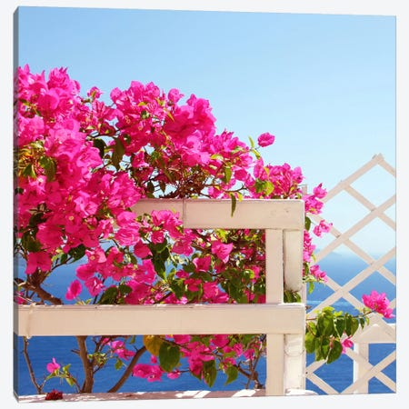 Santorini Blooms Canvas Print #COO30} by Sylvia Coomes Canvas Art Print