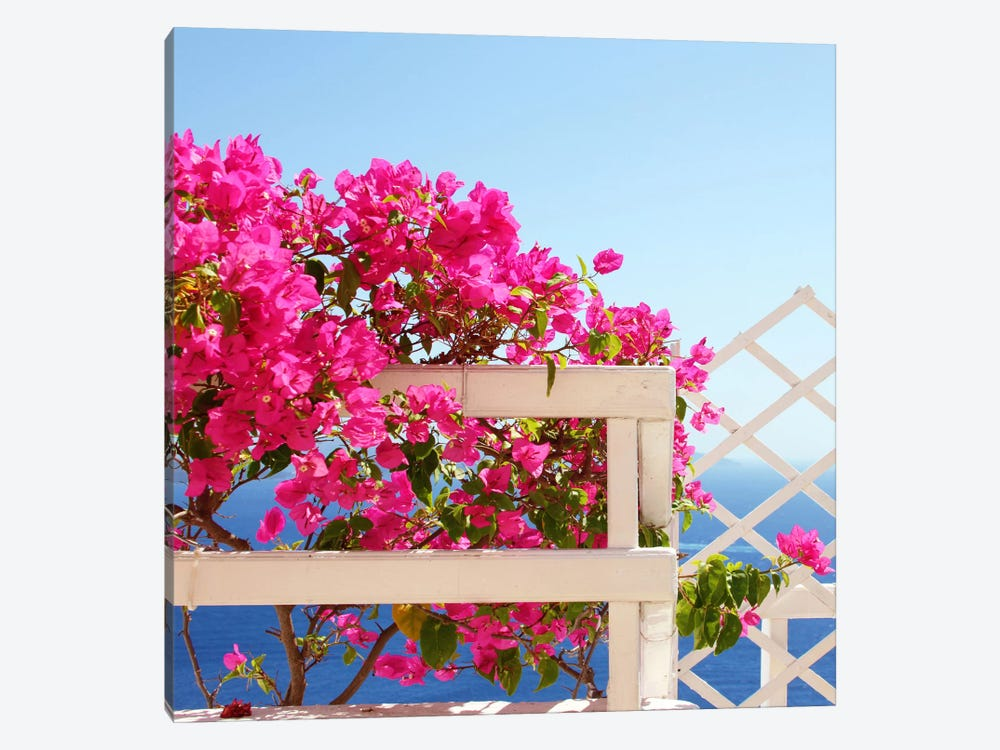 Santorini Blooms 1-piece Art Print
