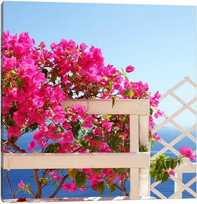 Santorini Blooms Canvas Art Print