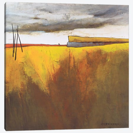 Fascinating Landscape II Canvas Print #COR2} by Emiliana Cordaro Art Print