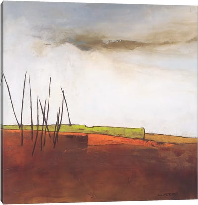 Fascinating Landscape III Canvas Art Print