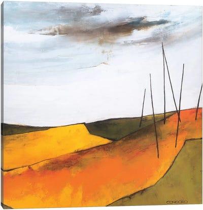 Fascinating Landscape VI Canvas Art Print
