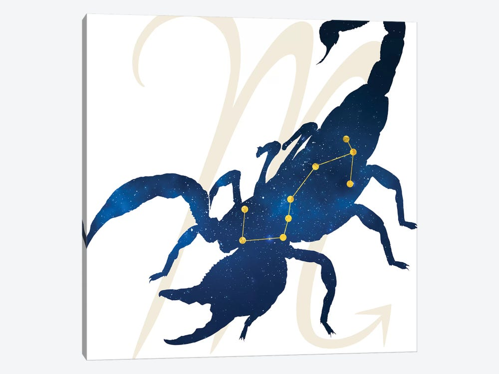 Stars of Scorpio by 5by5collective 1-piece Canvas Wall Art