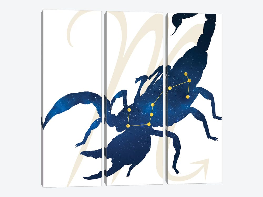 Stars of Scorpio by 5by5collective 3-piece Canvas Wall Art
