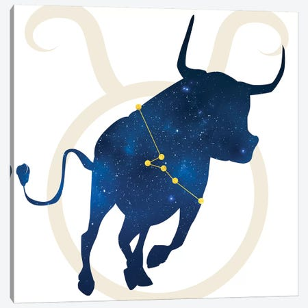 Stars of Taurus Canvas Print #COS11} by 5by5collective Canvas Art Print