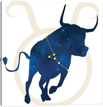 Stars of Taurus Canvas Art Print
