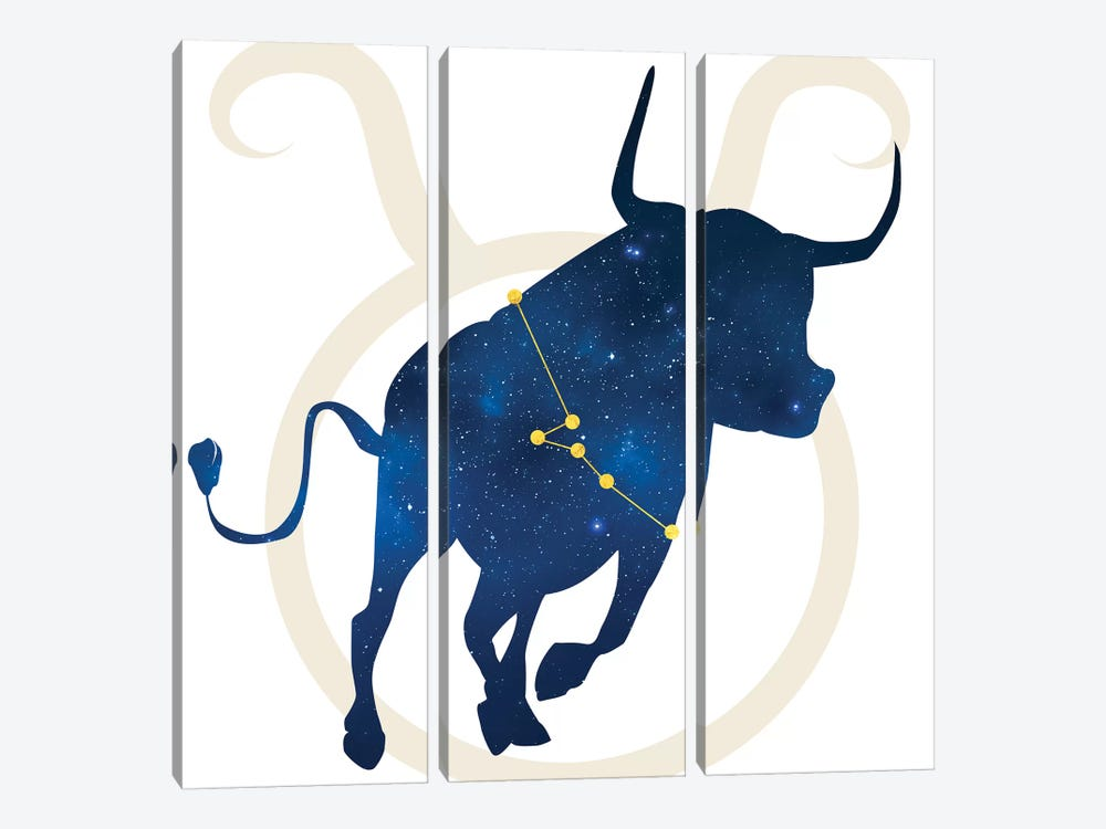 Stars of Taurus by 5by5collective 3-piece Canvas Print