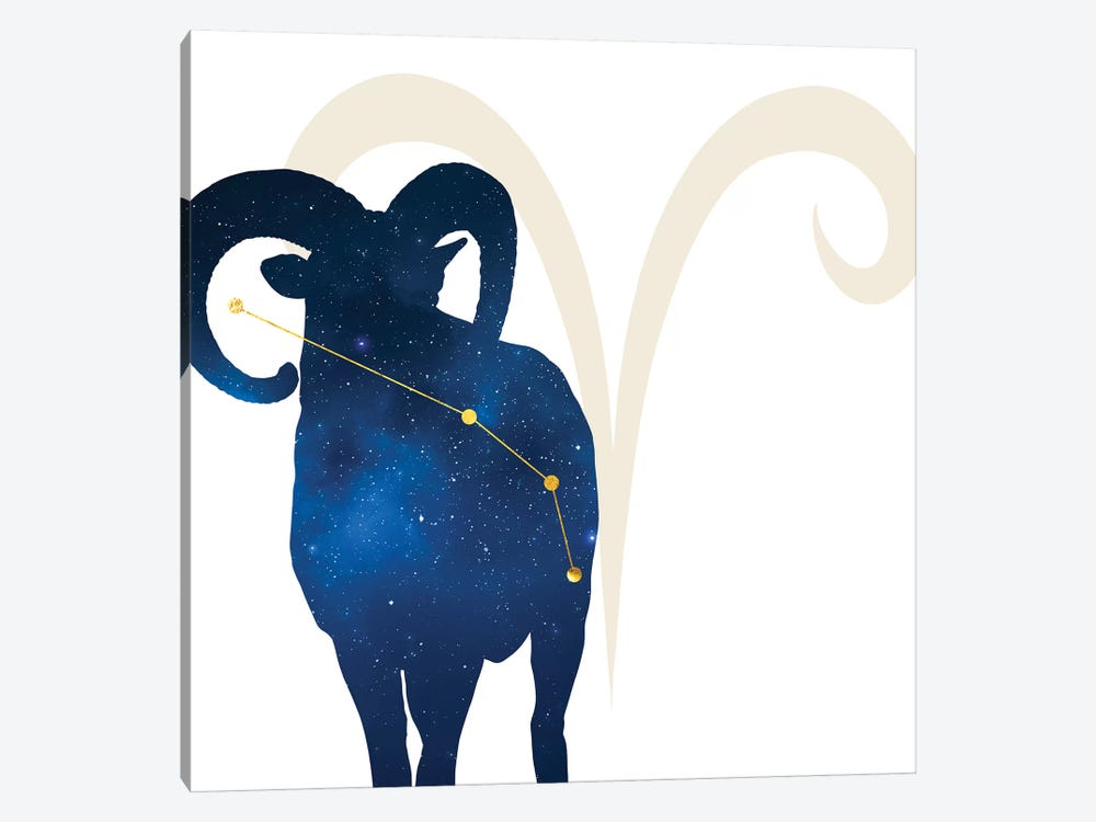 Stars of Aries by 5by5collective 1-piece Canvas Artwork