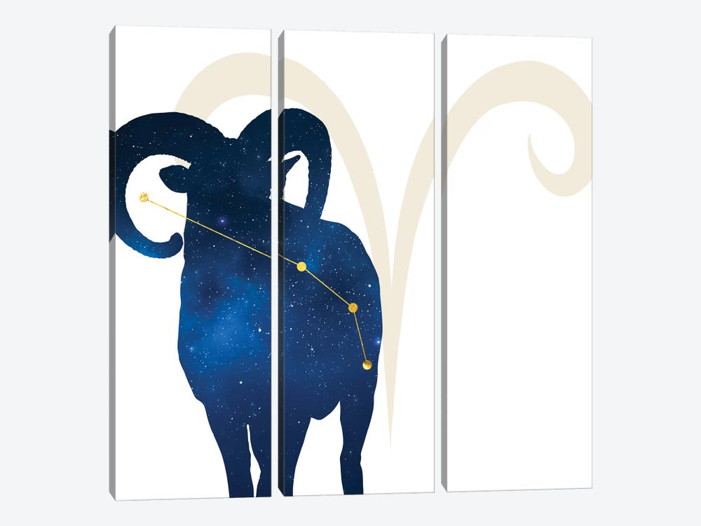 Stars of Aries by 5by5collective 3-piece Canvas Artwork