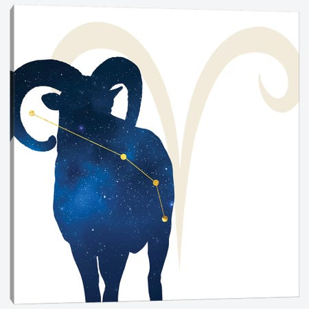 Stars of Aries Canvas Print #COS2} by 5by5collective Canvas Wall Art