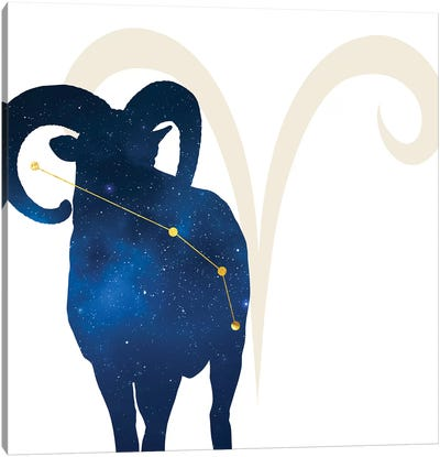 Stars of Aries Canvas Art Print